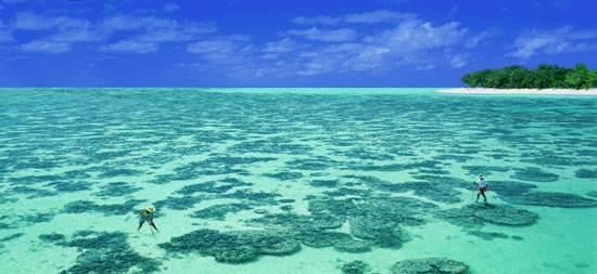 australia-great-reef-barrier-17