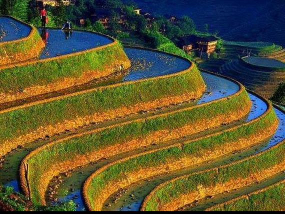 Banaue Rice Terraces, in Ifugao Stairway to Heaven Philippines   _02