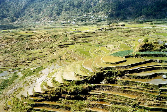 Banaue Rice Terraces, in Ifugao Stairway to Heaven Philippines   _04