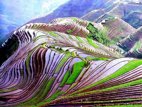Banaue Rice Terraces, in Ifugao Stairway to Heaven Philippines   _11