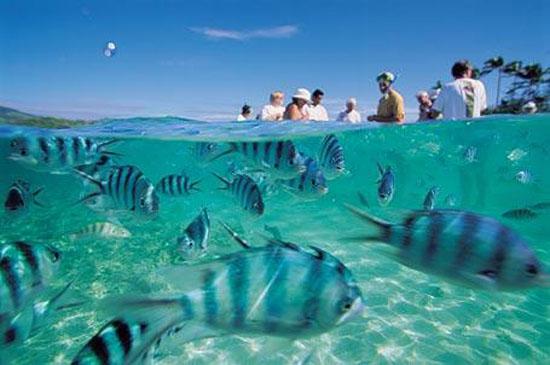 Makatea Island Resort