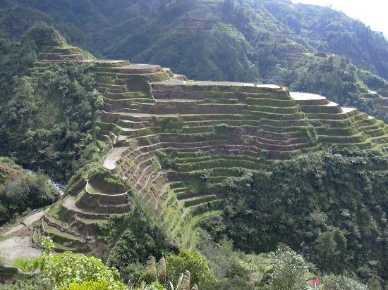 rice terraces in danger essay Unesco world heritage sites in asia and south-east asia   other unesco world heritage sites in china:  cultural landscape of honghe hani rice terraces.