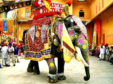 Copy of decorated_indian_elephant