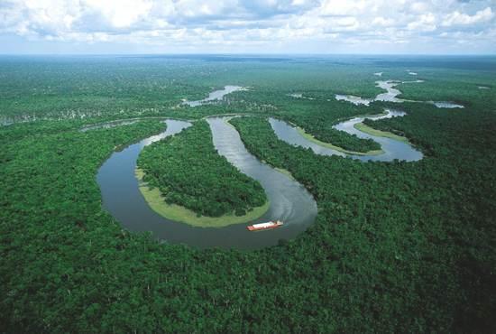amazon-bolivia-8