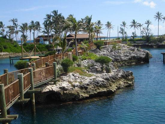 bahamas-the-paradise-island-8