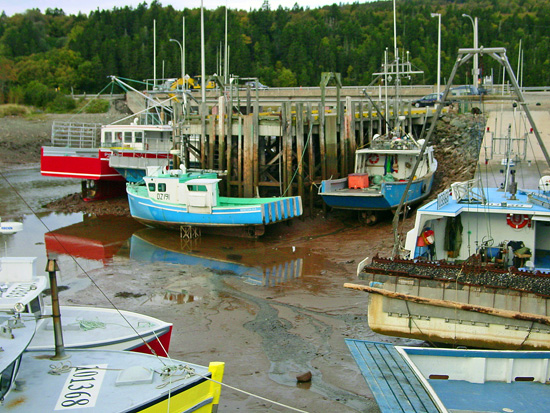 canada-bay-of-fundy-tidesthe-highest-tides-in-the-world-6