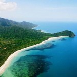 Australia  Queensland, Daintree The Oldest Continuously Living Rain Forest