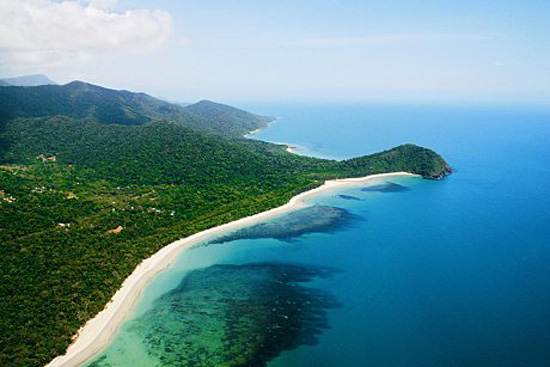 daintree-the-oldest-continuously-living-rain-forest-11