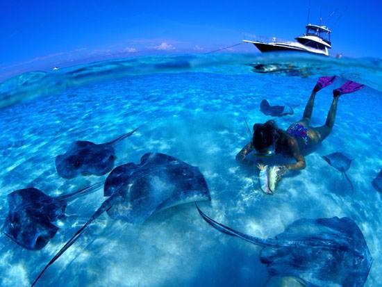 dutch-caribbean-island-paradise-on-the-abc-islands-aruba-13