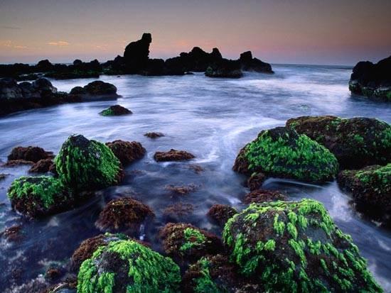 hookipa-seascape-maui-hawaii
