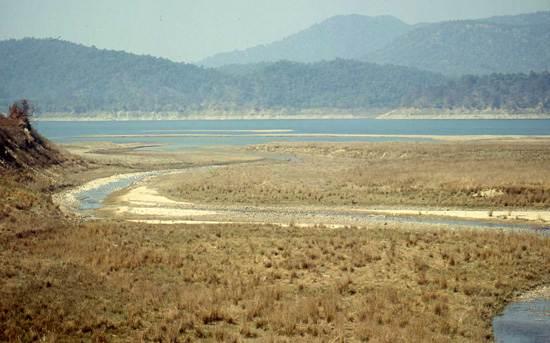 india-corbett-national-park-tiger-reserve-12