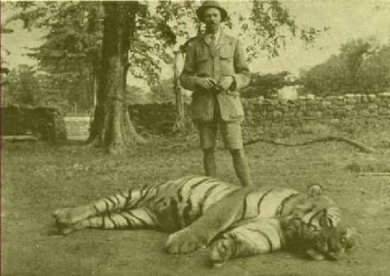 india-corbett-national-park-tiger-reserve-4