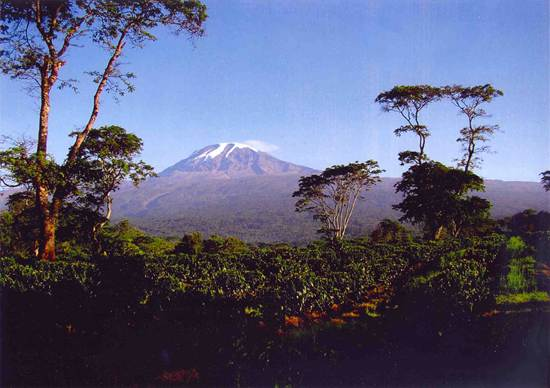 mount-kilimanjaro-mountain-of-light-9