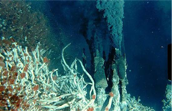 ocean-floor-deep-sea-vents-15