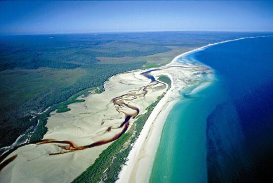 queensland-fraser-sandy-island-6