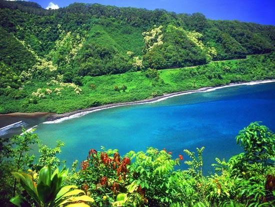 road_to_hana_turquoise_lagoon_maui_hawaii_wallpaper_desktop_background