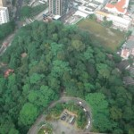 The Worlds Oldest Tropical Rainforest Beckons Malaysia