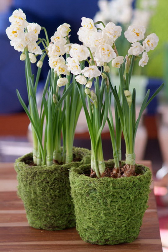 Creating Simple Sensational Centerpieces_08