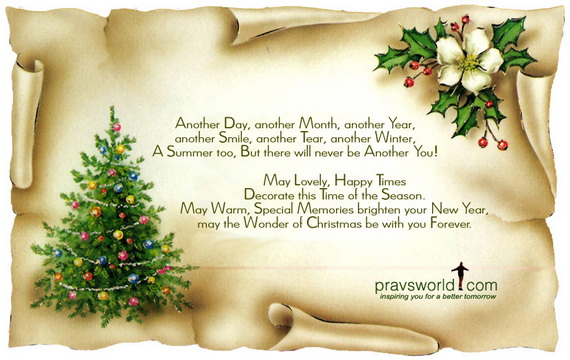 Holiday Wishes Quotes Gorgeous Christmas Holiday Wishes Quotes  Family Holidayguide To
