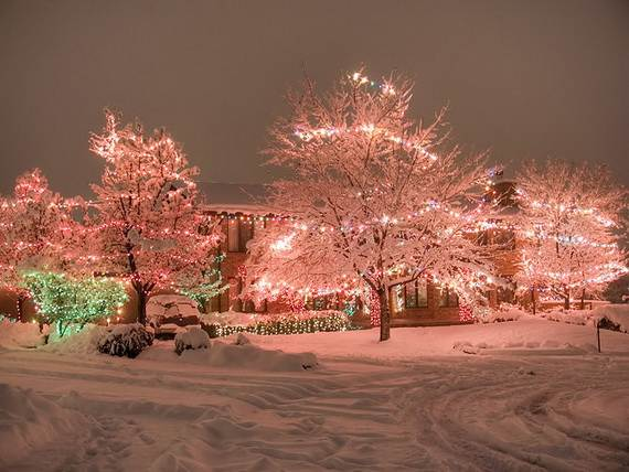 Fantastic Christmas Holiday Lights Display_08