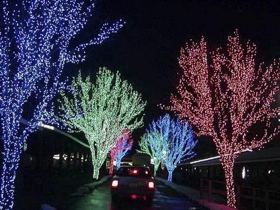 Fantastic-Christmas-Holiday-Lights-Display_19