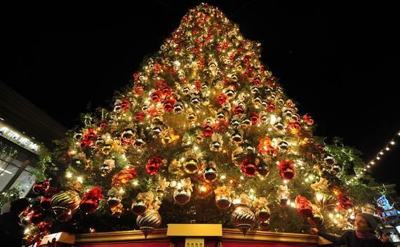 Fantastic-Christmas-Holiday-Lights-Display_27