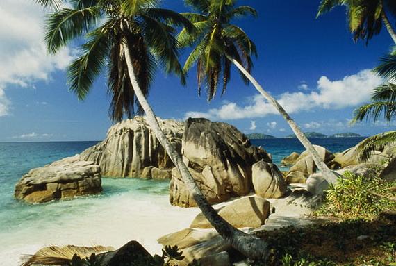 Palm Island Resort Tortoise