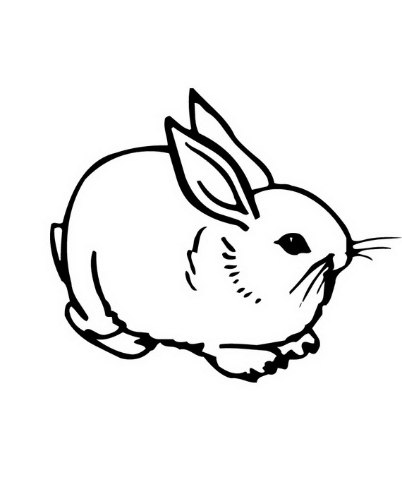 bunny coloring pages 100 images bunny coloring pages in free