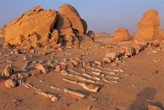 Wadi Al Hitan Whale Valley World Heritage Site In Egypt