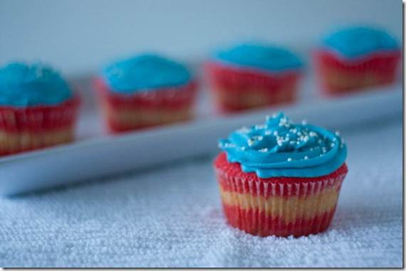 Independence Day Cakes & Cupcakes Decorating Ideas (44)