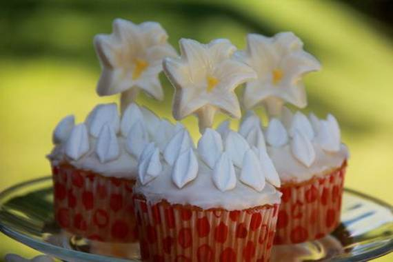 feast-of-st-francis-of-assisi-cupcake_19