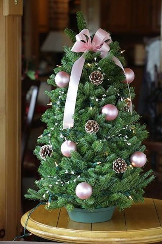 Different Decorated Christmas Trees