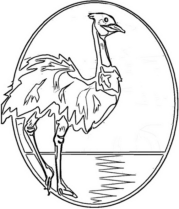 Australia- Day- Coloring- Pages- for- Kids_19