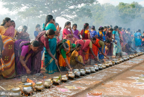 Pongal – Celebrating the Indian Harvest Festival_14