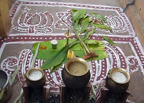 Pongal – Celebrating the Indian Harvest Festival_32