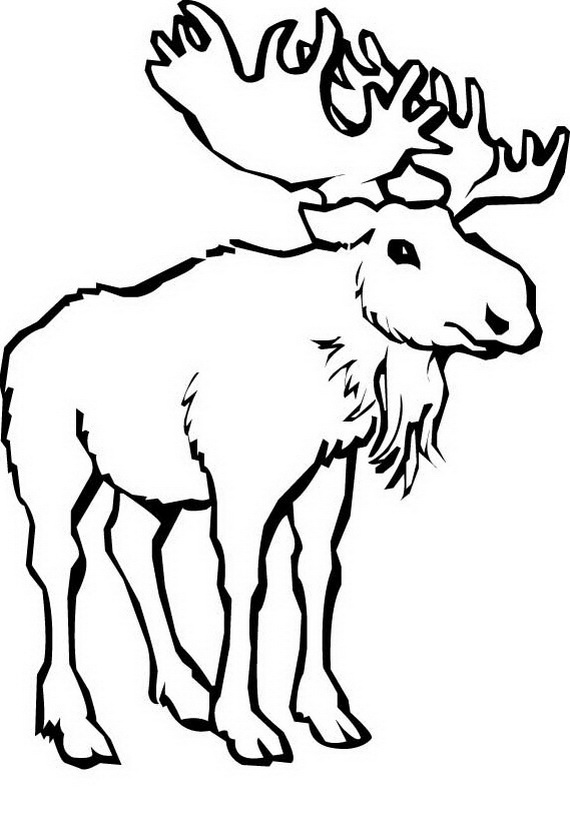 Canada Day Coloring Pages _57