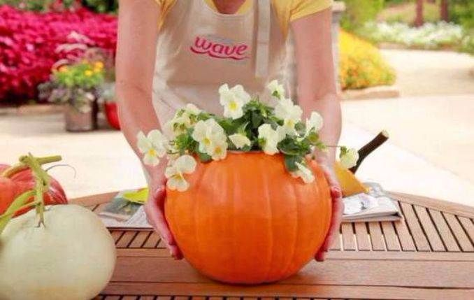Amazing-Pumpkin-Centerpieces-35