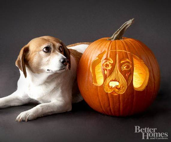 cool easy pumpkin carving ideas _06 - Cool Halloween Pumpkin Designs