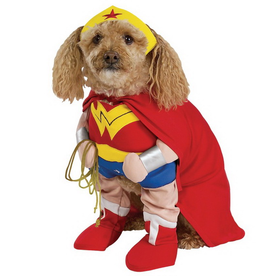 Unique and Beautiful Halloween Costumes Ideas for Pets_03