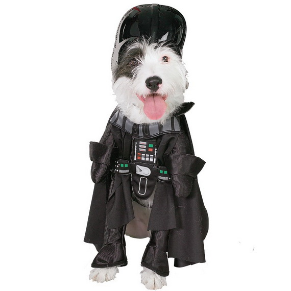 Unique and Beautiful Halloween Costumes Ideas for Pets_04