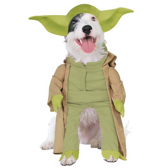 Unique and Beautiful Halloween Costumes Ideas for Pets_05