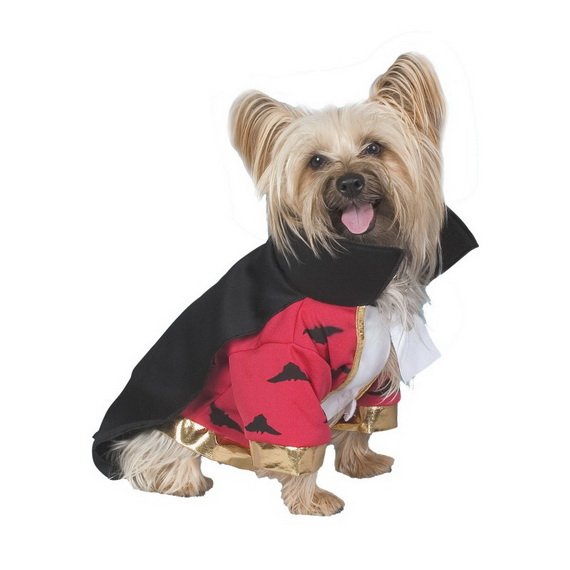 Unique and Beautiful Halloween Costumes Ideas for Pets_08