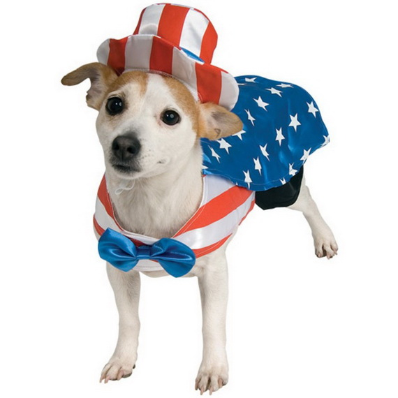 Unique and Beautiful Halloween Costumes Ideas for Pets_14