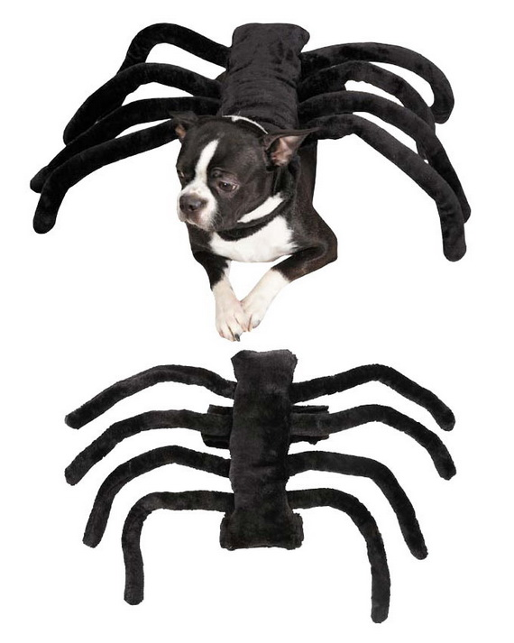 Unique and Beautiful Halloween Costumes Ideas for Pets_17