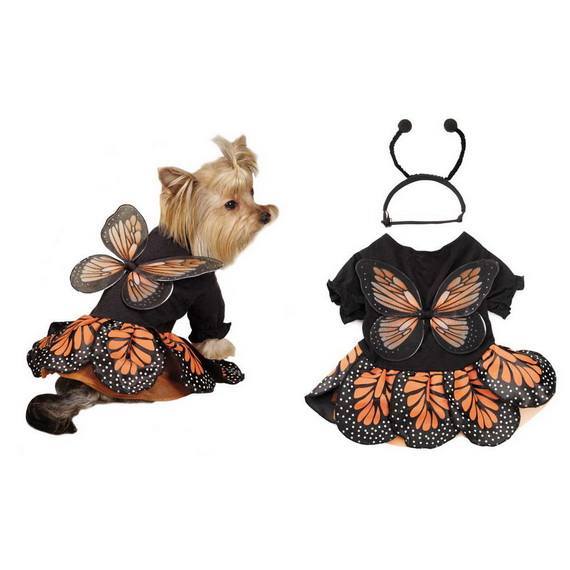 Unique and Beautiful Halloween Costumes Ideas for Pets_19