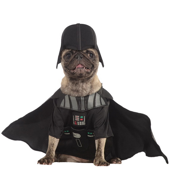 Unique and Beautiful Halloween Costumes Ideas for Pets_26