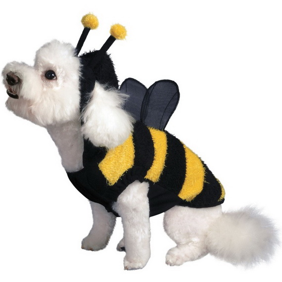 Unique and Beautiful Halloween Costumes Ideas for Pets_33