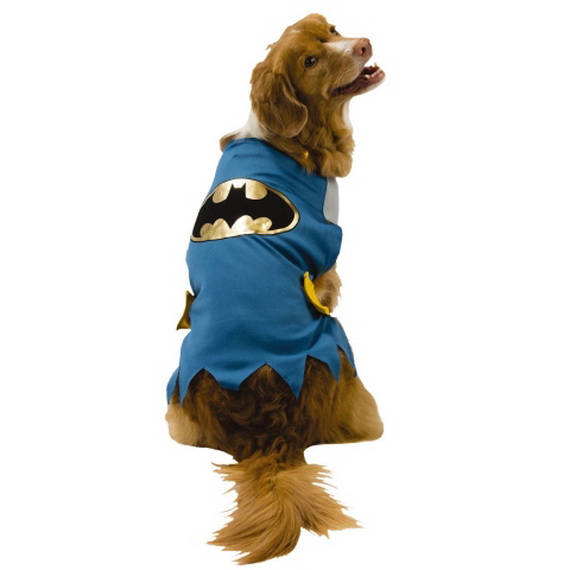 Unique and Beautiful Halloween Costumes Ideas for Pets_40