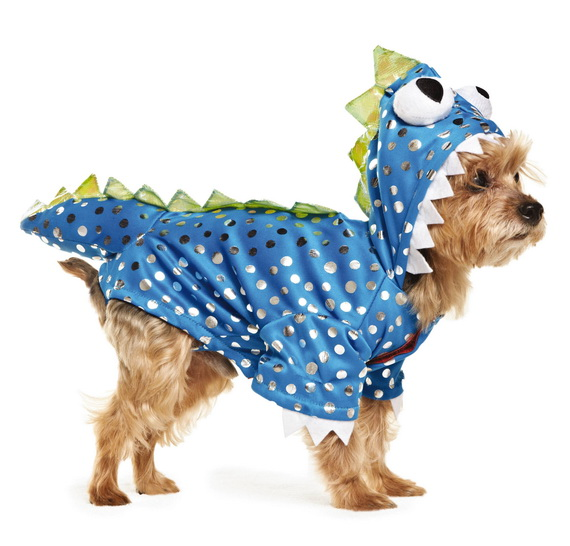 Unique and Beautiful Halloween Costumes Ideas for Pets_43