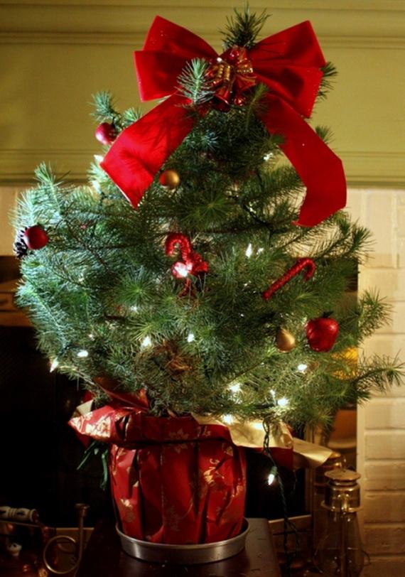 2013Tabletop Christmas Trees for the Holiday Season_01